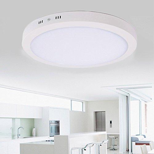 LED Ceiling Light Warm White Color High Brightness for Living Room (White) - How To Hang Ceiling Lights