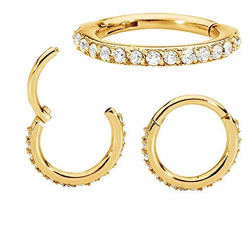 (365 Sleepers 1 Pair Stainless Steel 16G Hinged Gem Segment Ring Hoop Sleeper Huggie Earrings)