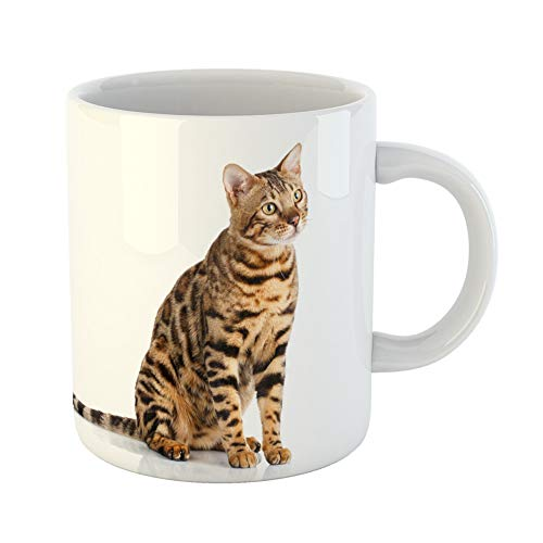 Emvency Coffee Tea Mug Gift 11 Ounces Funny Ceramic White Portrait of Purebred Bengal Cat on Sits Adorable Gifts For Family Friends Coworkers Boss Mug