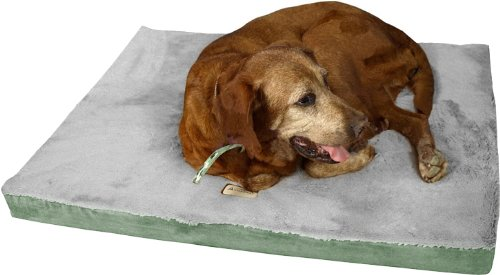 Armarkat Memory Foam Orthopedic Pet Bed Pad in Sage Green and Gray, 24-Inch by 18-Inch by ()