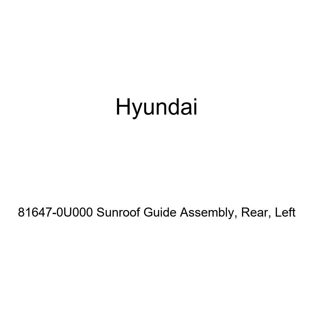 Rear Genuine Hyundai 81647-0U000 Sunroof Guide Assembly Left