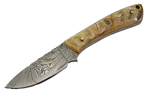 Horn Handle Leather Sheath - Texan Knives Damascus Steel Asdaq's Knives Fixed Blade Knife with Sheep's Horn Handle Includes Leather Sheath, 6.25