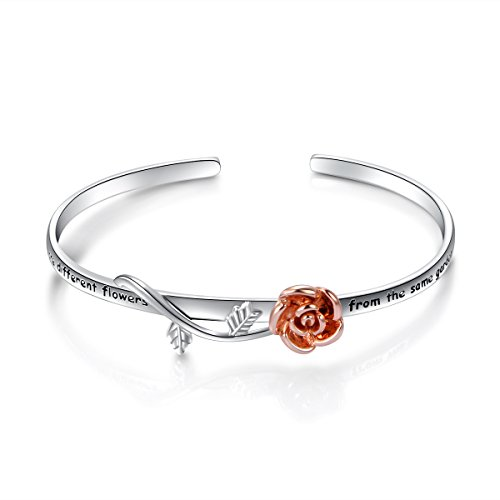DAOCHONG S925 Sterling Silver BFF Bangle Sisters are Flowers from The Same Garden Bangle for Women Sisters Friend (Bangle)