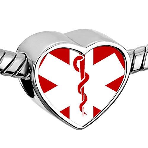 Charmed Craft Heart Love Nurse Charms Nurse Cap Red Cross Dangle Beads for Bracelets (photo nurse)