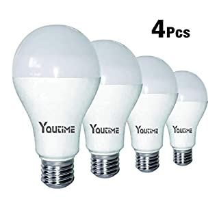 A21 LED Bulb, 20W (150-200W Equivalent) 2200LM Non-dimmable and 5000K Daylight, E26 Medium Screw Base Light Bulb for Bathroom & Kichen, 4 Packs by Youtime