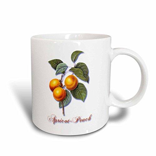 3dRose mug_171159_1 Apricot-Peach, Botanical Print of Bright Yellow Fruits on a Branch Ceramic Mug, 11-Ounce