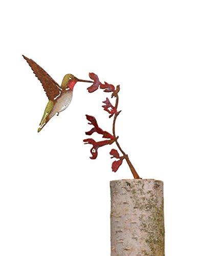 Elegant Garden Design Upright Hummingbird on Salvia Flower - Painted
