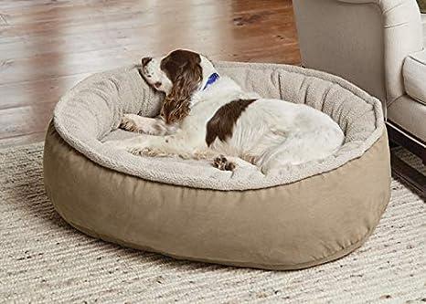 Amazon.com: Orvis - Cama de espuma viscoelástica para perro ...