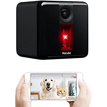 Amazon Com Petcube Play Smart Pet Camera With Interactive