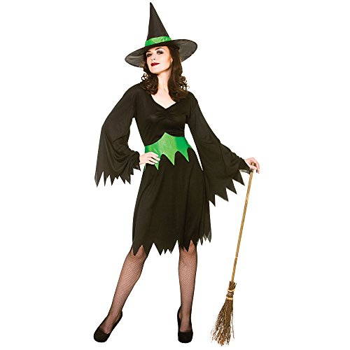 Witches Of Eastwick Halloween Costumes (Adults Ladies Wicked Witch Costume for Halloween oz Eastwick Cosplay US Size)