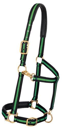Classic Nylon Halters - Weaver Leather Padded Adjustable Nylon Horse Halter, Green, 1