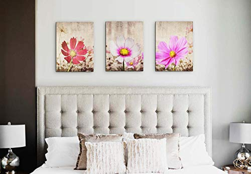 Black White Background Cosmos Flower Wall Art with Wood Frame for Bedroom - Three Panels Floral Canvas Prints for Office Decorate – Coloured Botanical Decor Painting Gift for Anniversary (12x16inch x