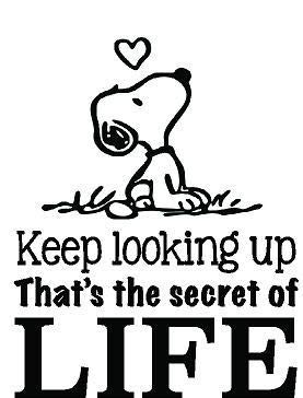 Amazon.com: DS Inspirational Decals Snoopy Quote Vinyl Wall ...