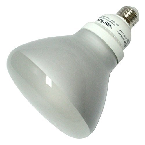 Compact 23w R40 - Verilux 23 Watt Natural Spectrum Compact Fluorescent R40 Flood Bulb, Single Pack by Verilux