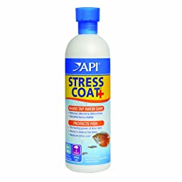 API Stress Coat Water Conditioner, 16-Ounce