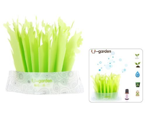 QIBOX Creative Environmental Friendly Green humidifier / without Power Humidifier / No electricity required