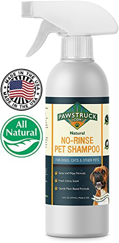 No-Rinse Dry Waterless Dog Shampoo (16 fl oz) Natural & Made in USA Rinseless Deodorizing Citrus Spray for Puppies & Pets to Clean, Bathe, Freshen & Remove (Naturals Deodorizing Shampoo)