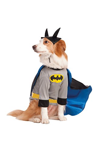 Wayne Family Costume (DC Comics Batman Big Dog Boutique, XX-Large)