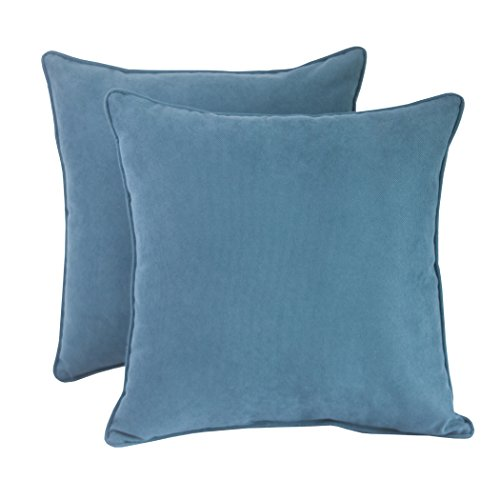 Basic Beyond Outdoor Decorative Pillows - Multicolored Modern Floral Square Shape with Insert, 2-Pack by Basic Beyond