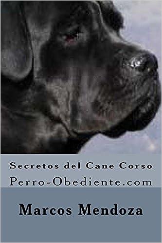 Secretos Del Cane Corso Perro Obedientecom Amazones Marcos