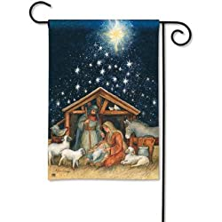 Magnet Works MAIL34012 Holy Night Garden Flag
