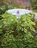 Gardener's Supply Company Recycled Glass Birdbath
