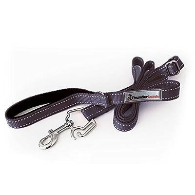 ThunderLeash Original No-Pull Dog Leash, by Thundershirt