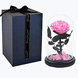 Meigui Lover Handmade Preserved Flower Rose with Real Fallen Petals - in Luxury Glass Dome with Wooden Base and Elegant Gift Box - Gift for Valentine's Day Mother's Day Anniversary Wedding (Pink) 30