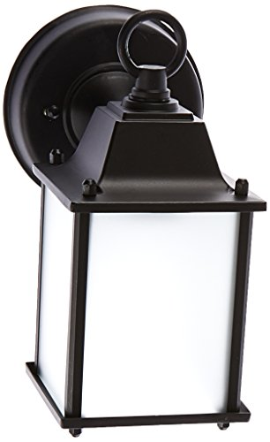 Acclaim 5001BK/FR Builder's Choice Collection 1-Light Wall Mount Outdoor Light Fixture, Matte Black