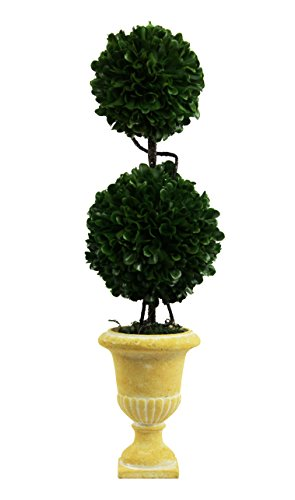 Admired By Nature Faux Preserved Artificial Boxwood Topiary Plant Tabletop with Double Ball in Pot, 18