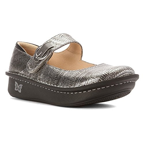 Unisex Chainmail (Alegria Women's Paloma Chain Mail Clog/Mule 34 (US Women's 4-4.5) Regular)