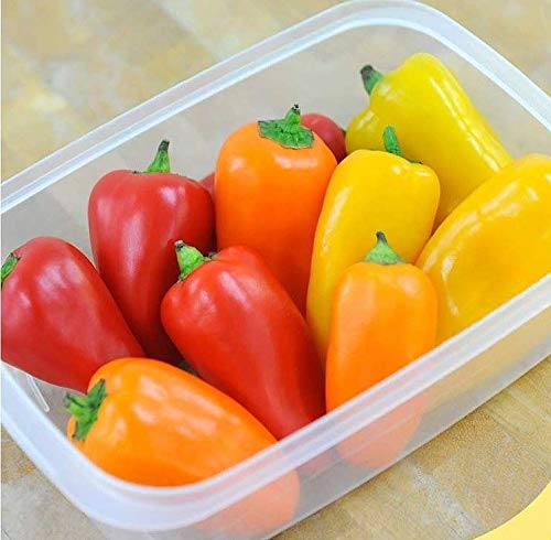 Sweet Mini Pepper Lunchbox Three Colours high yields supersweet 10 Organic Seeds