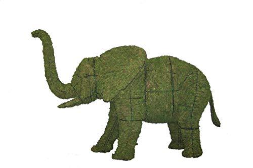 - Elephant 27
