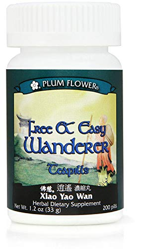 (Plum Flower Economy Size - Free and Easy Wanderer - Xiao Yao Wan - 1,000 Teapills)