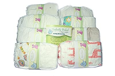 Perfectly Picked Diaper Sampler- Going Green Box - Eco Friendly Disposable Diaper Variety Pack (Diaper Size 1) Size: Diaper Size 1 Model: PP-GGB (Newborn, Child, Infant)