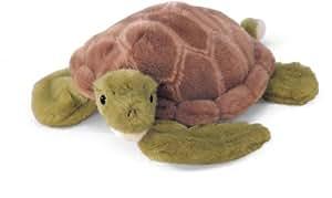 Shea turtle