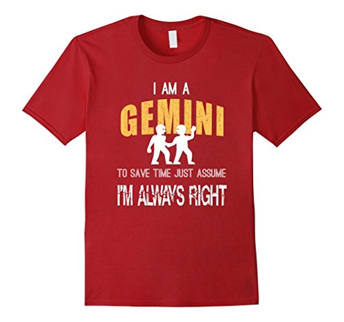 Horoscope Gemini Zodiac Sign (Mens Gemini: Zodiac Sign Horoscope Birthday T-Shirt 2XL Cranberry)
