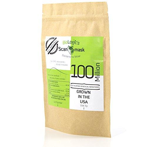 Biologic 39 s scanmask beneficial nematodes 1 10x100m for Beneficial nematodes for termites