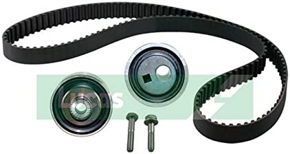 Online Automotive TBWPPG10614D 1001 Timing Belt Kit with Water Pump