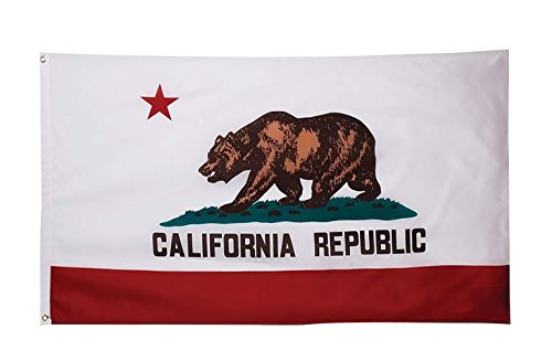 WOWMAR California State Flags - California Flag- 3x5 FT Flag