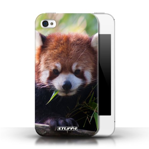 iCHOOSE Print Motif Coque de protection Case / Plastique manchon de telephone Coque pour Apple iPhone 4/4S / Collection Animaux sauvages / Raton laveur