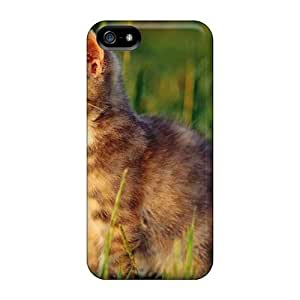 High Quality Fdc17499DHLK Kitten In Grass Cases For Iphone 5/5s