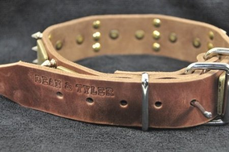 Dean and Tyler  BEAUTY AND THE BOLD , Dog Collar with Brass Plate and Nickel Spike  Brown  Size 46cm by 4cm  Fits Neck 41cm to 51cm