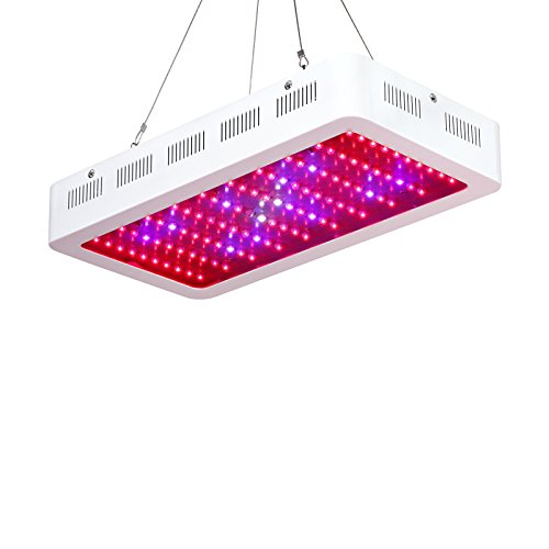 Best 3 Watt Led Grow Light - 2