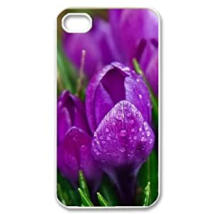 Violet Flowers with Drops iPhone 4/4s Cases, Men Iphone 4 S Case Case Bloomingbluerose {White}