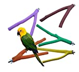 Scrubbing Sticks Grinds Claw Sticks for All Types of Parrots Wood Sticks for Birds 2 Sizes Randomly Color (20cm)