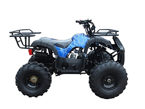 TaoTao Atv TForce 110cc Big Rugged Wheels
