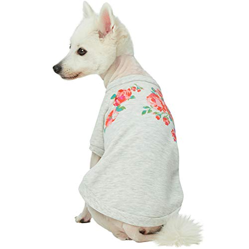 Blueberry Pet 2019 New Love at First Sight Rose Flower Pullover Dog Sweatshirt in Grey, Back Length 10
