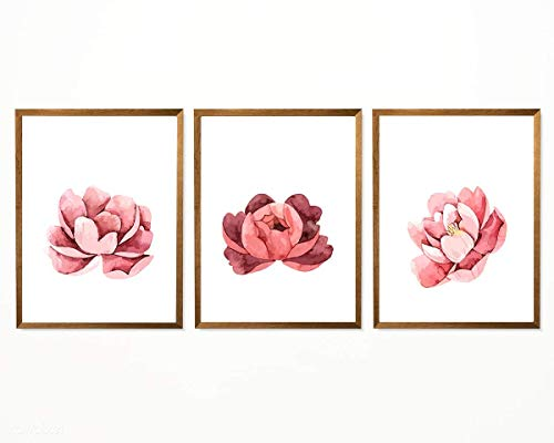 """Floral Print, Pink Poeny Print - 8"""" x 10"""" - Unframed, Watercolor Pastel Flower Art, Floral Nursery Art, Pink Collection of Poppies, Peonies and Ranunculus - Set of 3 from Hadora"""