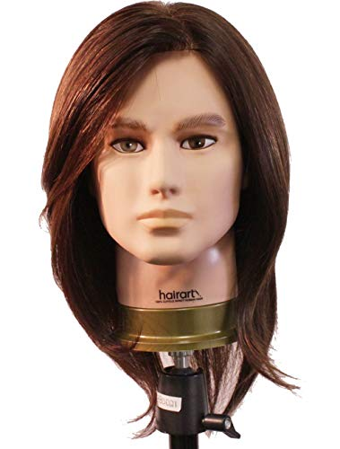 HairArt Cosmetology Mannequin Head (Steve) with Human for sale  Delivered anywhere in USA